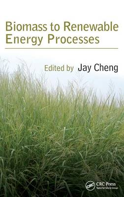 Biomass to Renewable Energy Processes (Hardback)