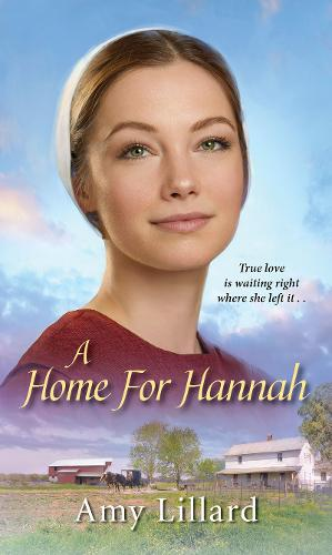 Home for Hannah (Paperback)