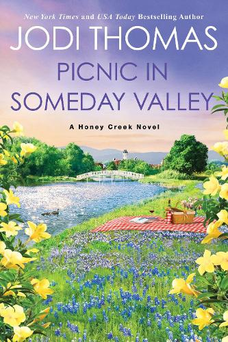 Picnic in Someday Valley (Paperback)