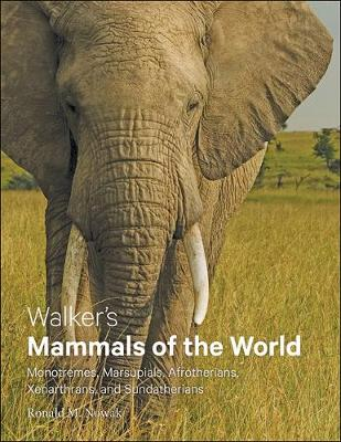Walker's Mammals of the World: Monotremes, Marsupials, Afrotherians, Xenarthrans, and Sundatherians (Hardback)