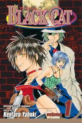 Black Cat, Vol. 9 - Black Cat 9 (Paperback)