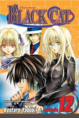 Black Cat, Vol. 12 - Black Cat 12 (Paperback)
