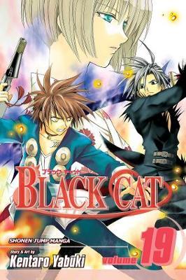 Black Cat, Vol. 19 - Black Cat 19 (Paperback)