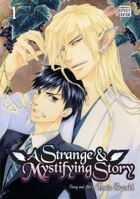 A Strange and Mystifying Story, Vol. 1 - A Strange and Mystifying Story 1 (Paperback)