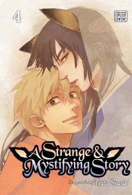 A Strange and Mystifying Story, Vol. 4 - A Strange and Mystifying Story 4 (Paperback)