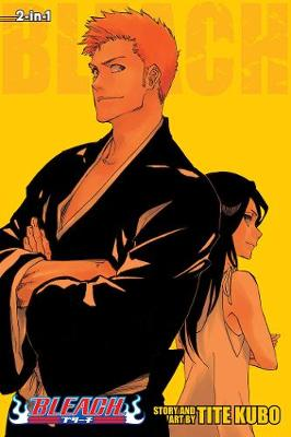 Bleach (2-in-1 Edition), Vol. 25: Includes vols. 73 & 74 - Bleach (3-in-1 Edition) 25 (Paperback)