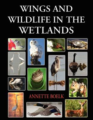 Wings and Wildlife in the Wetlands (Paperback)