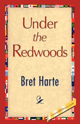 Under the Redwoods (Hardback)