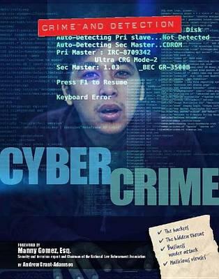 Cyber Crime (Hardback)