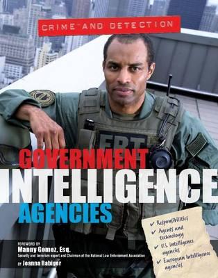 Government Intelligence Agencies (Hardback)