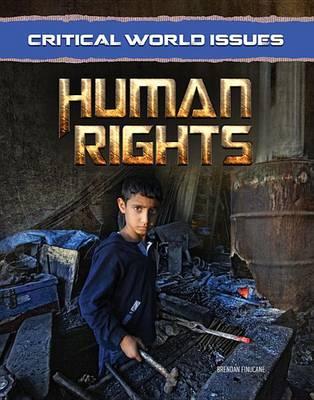 Human Rights (Hardback)