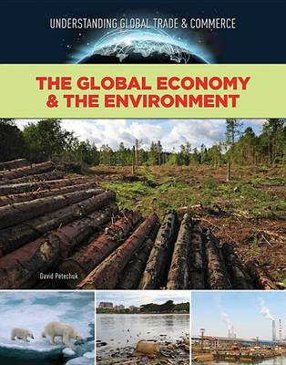 The Global Economy & the Environment (Hardback)