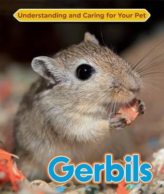 Gerbils (Hardback)