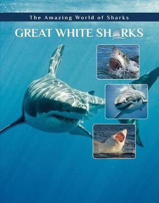 Great White Sharks (Hardback)