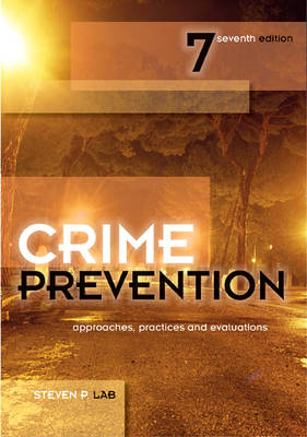 Crime Prevention: Approaches, Practices and Evaluations (Paperback)