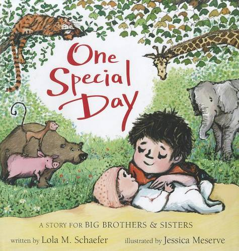 One Special Day: A Story for Big Brothers and Sisters (Hardback)