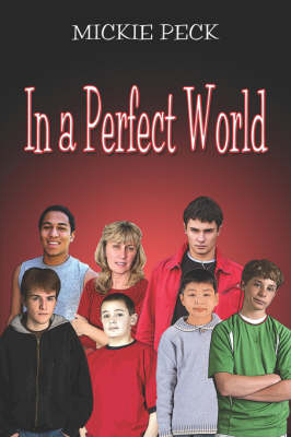 In a Perfect World (Paperback)
