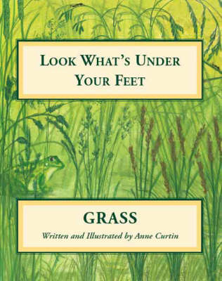 Look What's Under Your Feet: Grass (Paperback)