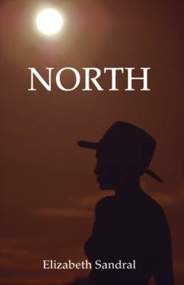 North (Paperback)