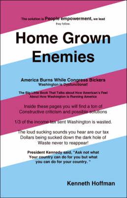 Home Grown Enemies: America Burns While Congress Bickers (Paperback)