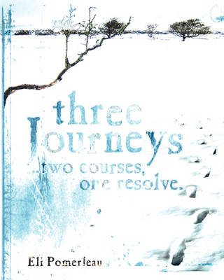 Three Journeys: ..Two Courses, One Resolve (Paperback)