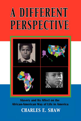 A Different Perspective: Slavery and It's Affect on the African-American Way of Life in America (Hardback)