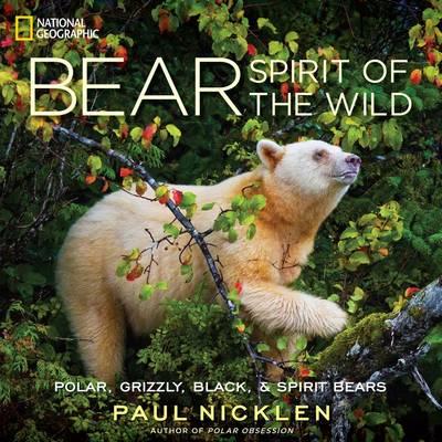 Bear: Spirit of the Wild (Hardback)