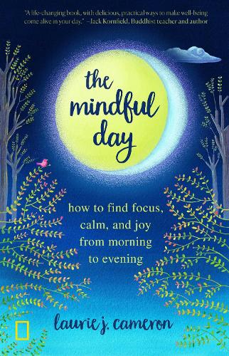 The Mindful Day: Practical Ways to Find Focus, Build Energy, and Create Joy 24/7 (Paperback)