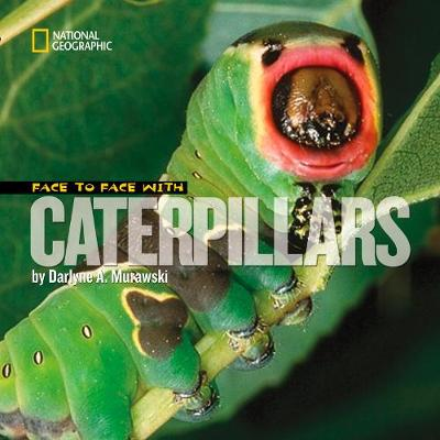 Face to Face with Catepillars - Face to Face (Hardback)
