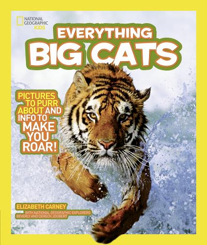 Everything Big Cats: Pictures to Purr About and Info to Make You Roar! - Everything (Paperback)