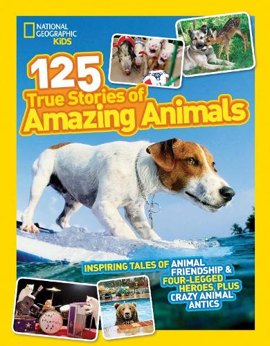 125 True Stories of Amazing Animals: Inspiring Tales of Animal Friendship & Four-Legged Heroes, Plus Crazy Animal Antics - 125 (Paperback)