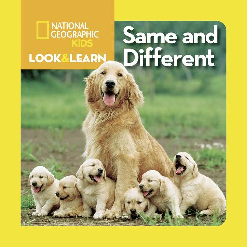 Look and Learn: Same and Different - Look&Learn (Board book)