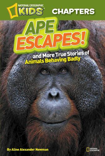 National Geographic Kids Chapters: Ape Escapes: And More True Stories of Animals Behaving Badly - National Geographic Kids Chapters (Paperback)