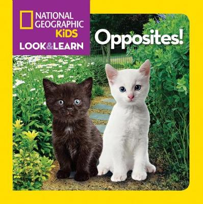 Look and Learn: Opposites! - Look&Learn (Board book)