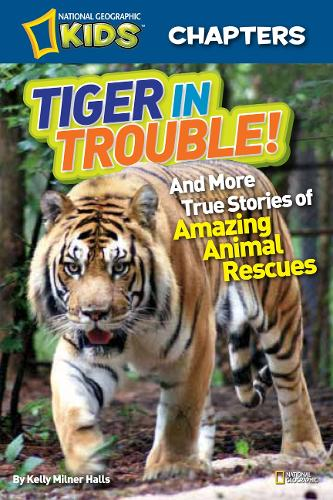 National Geographic Kids Chapters: Tiger in Trouble!: And More True Stories of Amazing Animal Rescues - National Geographic Kids Chapters (Paperback)