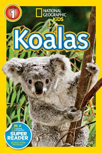 National Geographic Kids Readers: Koalas - National Geographic Kids Readers: Level 1 (Paperback)