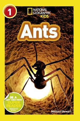National Geographic Kids Readers: Ants - National Geographic Kids Readers: Level 1 (Paperback)