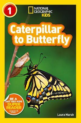 National Geographic Kids Readers: Caterpillar to Butterfly - National Geographic Kids Readers: Level 1 (Paperback)
