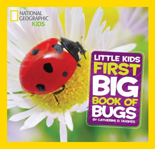 Little Kids First Big Book of Bugs - First Big Book (Hardback)