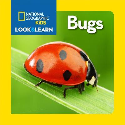 Look and Learn: Bugs - Look&Learn (Board book)