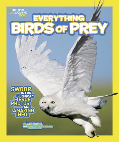 Everything Birds of Prey: Swoop in for Seriously Fierce Photos and Amazing Info - Everything (Paperback)