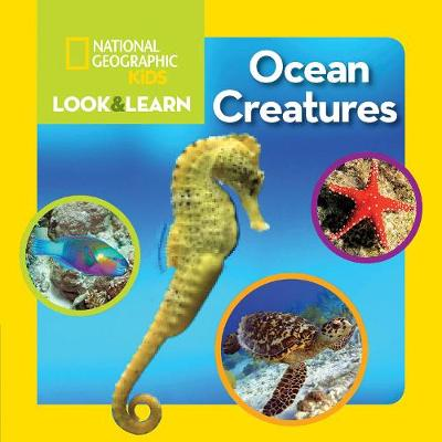 Look and Learn: Ocean Creatures - Look&Learn (Board book)
