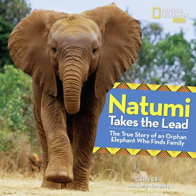 Natumi Takes the Lead: The True Story of an Orphan Elephant Who Finds Family - Picture Books (Hardback)