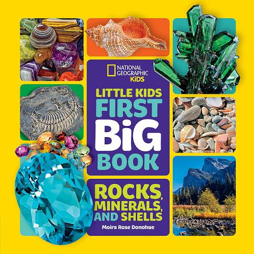 Little Kids First Big Book of Rocks, Minerals and Shells - National Geographic Kids (Hardback)