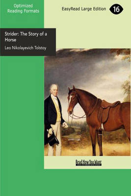 Strider: The Story of a Horse (Paperback)