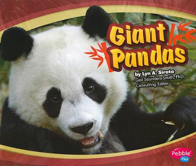 Giant Pandas - Asian Animals (Paperback)