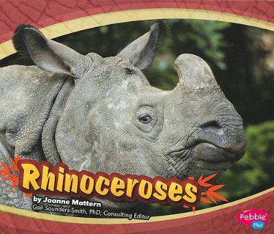 Rhinoceroses - Asian Animals (Paperback)