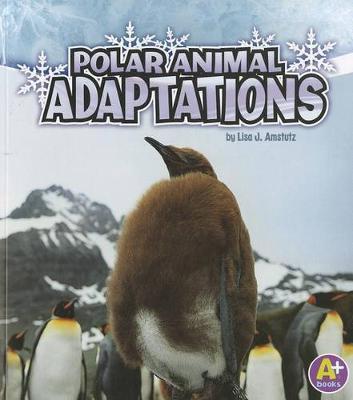 Polar Animal Adaptions - Amazing Animal Adaptions (Paperback)