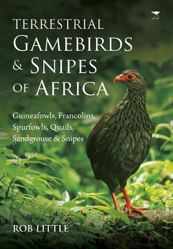 Terrestrial gamebirds & snipes of Africa: Guineafowls, Francolins, Spurfowls, Quails, Sangrouse & Snipes (Paperback)