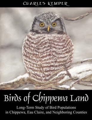 Birds of Chippewa Land (Paperback)